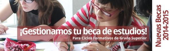 Becas CFGS