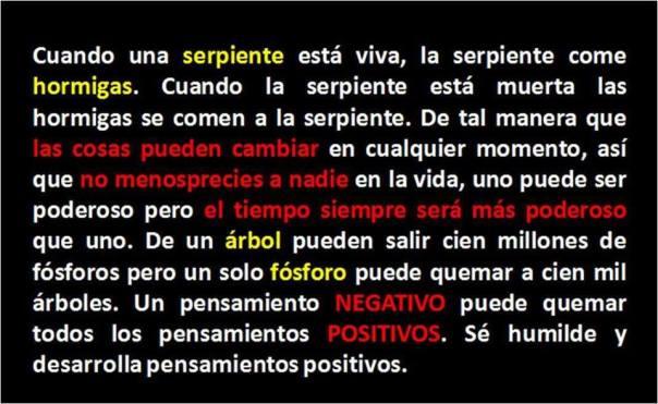 Un pensamiento negativo puede quemar todos los pensamientos positivos.